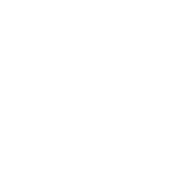 LFStyle